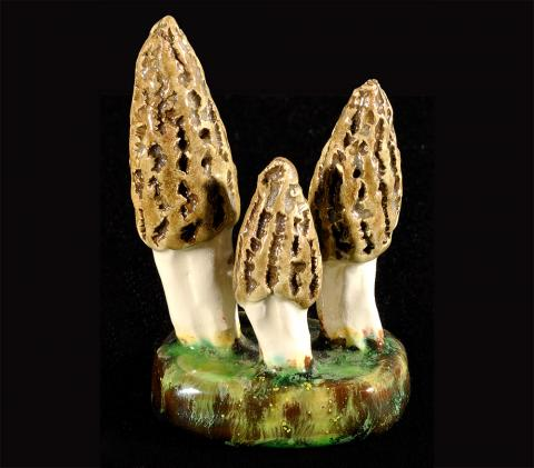 Alma and Ernst Lorenzen, <em>Morchella Conicus</em>, 9.5 x 6.2 x 4.9 cm